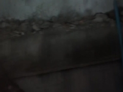 Bella Margo  in bikini girl represents a sex on the beach xxx