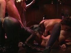 Batman Porn Parody Gangbang Group Sex Party with Catwom