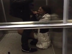 new girl in the office sucks off co-worker in the elevator