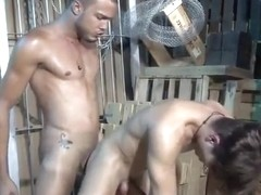 Crazy male in best action, bareback homosexual adult movie