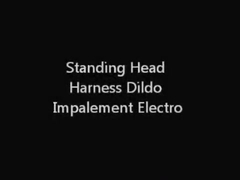 Standing Head Harness Sex Toy Impalement Electro