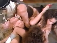 1989 The Young And The Wrestling Round II