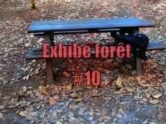 Forest's exhibe #10